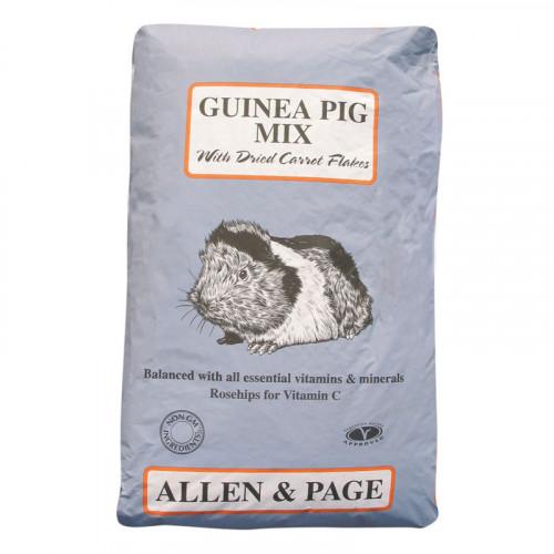 A & P Guinea Pig