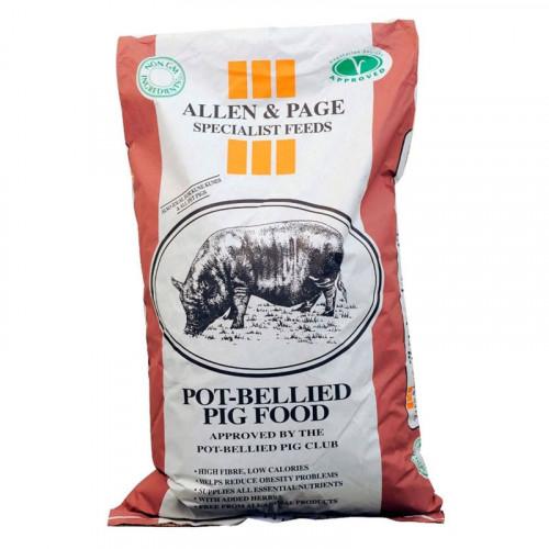 A & P Pot Belly Pig Pencils