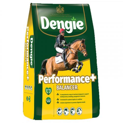 Dengie Performance Balancer15kg