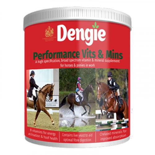 Dengie Performance Vits & Mins 2kg