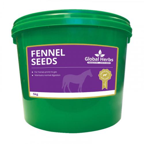Global Herbs Fennel 1kg