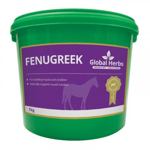 Global Herbs Fenugreek 1kg