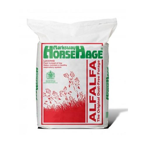 Horse Hage Red (Lucerne)