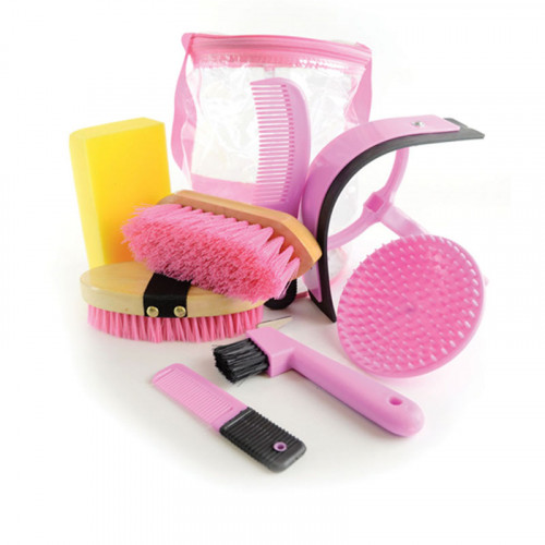 Lincoln Grooming Kit Pink