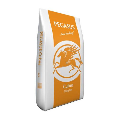 Pegasus Cubes