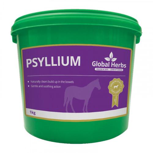 Global Herbs Psyllium 1kg