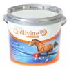 Super Codlivine Joint Supplement 2.5KG SILVER